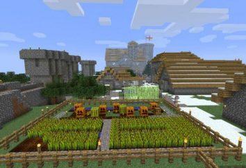 5 cose che i bambini amano di Minecraft, ei genitori non capiscono