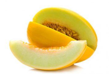 régime de melon pour la perte de poids: avis
