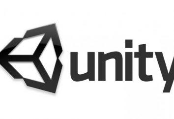 motor de jogo Unity. Unity 3D em russo