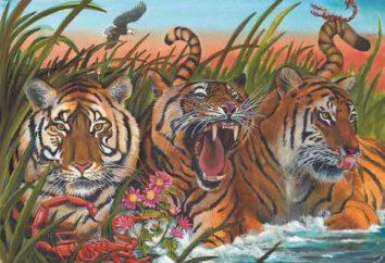 Scorpio-Tiger: il personaggio principale tratti, pregi e difetti