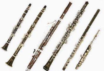 Wind Musikinstrument und seine Stimme