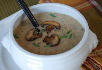 Brodo di cottura in un frullatore: ricetta saporita zuppa con funghi