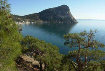 New Light of Crimea (2015): viajantes comentários