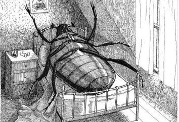 """Gregor Samsa – o herói do romance """"A Metamorfose"""""""