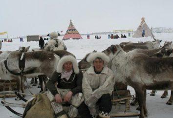 Siberia oriental: clima, naturaleza
