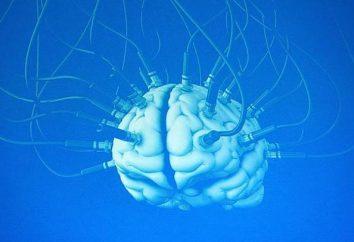 Die transkranielle elektrische Stimulation: Indikationen, Kontraindikationen, dass es behandelt? Die transkranielle Elektrostimulation des Gehirns: Bewertungen