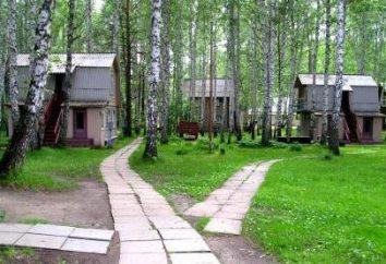 """centro ricreativo, """"Torri"""" (Novosibirsk): caratteristiche e recensioni"""