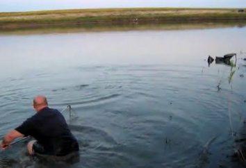 Wędkowanie w Saratowie – miejsca catchability