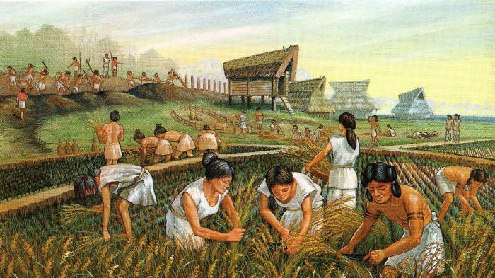 Картинки скотоводство и земледелие