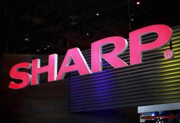 frigoriferi Sharp: produttore, modello recensioni