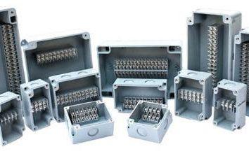 Raspayachnaya Box: tipi di dispositivi, applicazioni