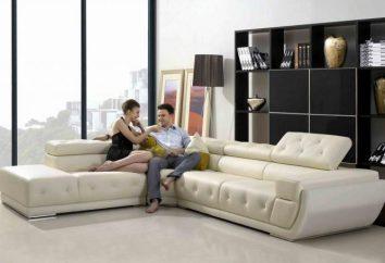 Les critères de sélection des meubles rembourrés: canapés d'angle tailles, matériaux et mécanismes de transformation