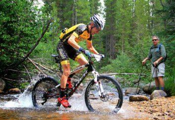 Stinger Vélos: photos modèle populaire