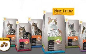 """""""ProPlan"""" (comida para gatos): opiniones veterinarios. Los comentarios de la popa """"ProPlan"""" gato seco y húmedo"""