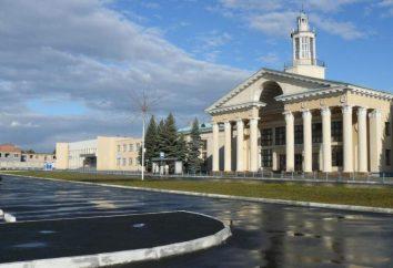 ¿Qué sabes acerca del aeropuerto de Chelyabinsk?