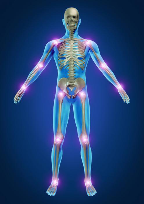 Artropant - die Creme der Schmerzen und Entzündungen in den Gelenken