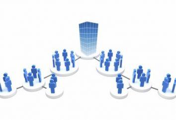 Organizacja – sztuczny układ