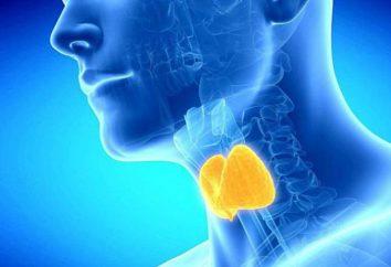 prodotti utili per la tiroide. Elenco dei prodotti contenenti iodio