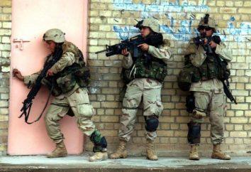 Stany Zjednoczone Siły – historia i teraźniejszość