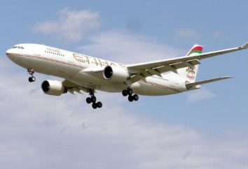 Etihad Airways: avis. compagnie aérienne Etihad Airways qui?
