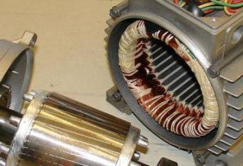Lo statore di: controllare, veloce. La distanza tra il rotore e lo statore del motore elettrico