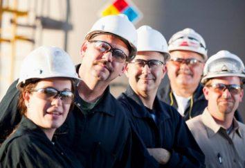 ABC udanego biznesu: jak obliczyć wydajność pracy