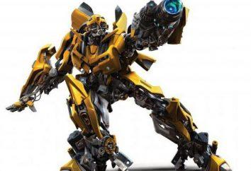 Trzmiel robota: opis charakteru
