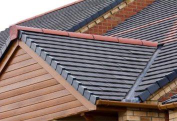 Os principais e adicionais elementos do telhado