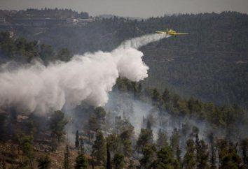 avion pompier. Histoire et présent