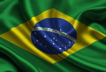 bandiera brasiliana: descrizione generale, il simbolismo e la storia di occorrenza