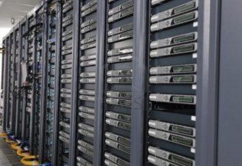 Wie Sie Ihre eigenen Server im Internet machen?