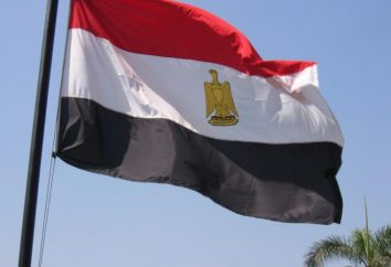 Le drapeau de l'Egypte: l'histoire et le sens