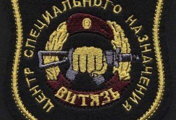 """SWAT """"Hero"""": caratteristiche del servizio, specifiche e recensioni"""
