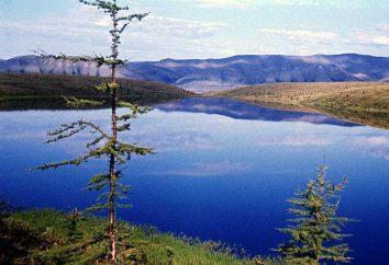 Ust-Leński Reserve: życie na lodzie