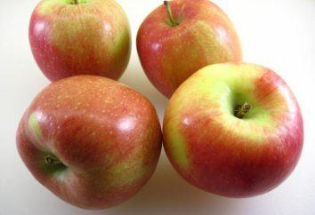 """Apple Tree """"bielorusso dolce"""": descrizione della varietà, foto, sfumature di semina e cura"""