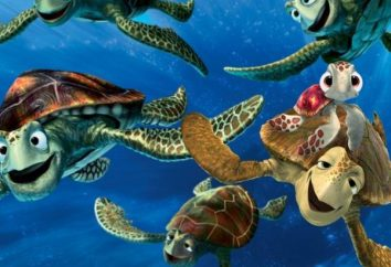Interprétation des rêves: rêve à ce que les tortues?