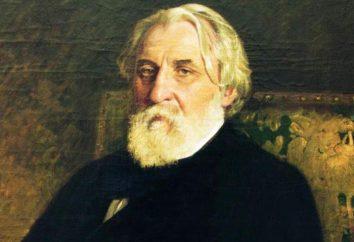 """Ein Essay über den Roman """"Väter und Söhne"""" I. S. Turgeneva"""