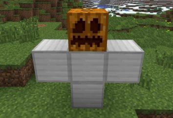 Amico e guardia del corpo: come fare un Golem in Minecraft