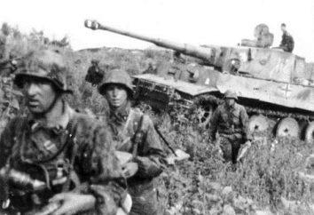 """""""Wysokość Tepłowsky"""" – pomnik ku czci obrońców Ojczyzny, która złamała przebieg II wojny światowej"""