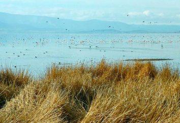 Lac Poopo: description et les photos