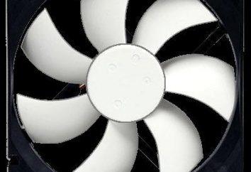 Program do przyspieszania komputera chłodnic na SpeedFan. Regulacja prędkości chłodnic