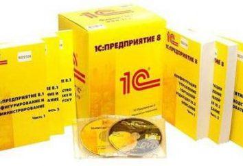1C alternativa. Visão geral de programas pagos e gratuitos para a contabilidade