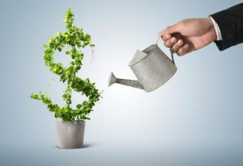 Kredyt dla rozwoju biznesu w firmie: dokumentów, warunków. Kredyty dla małych i średnich przedsiębiorstw