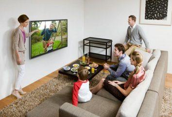 Smart TV – che cos'è? Collegamento e configurazione Smart TV