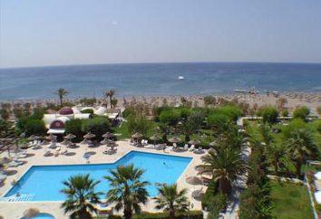 Relaxe nas ilhas gregas. Top de férias ilha grega