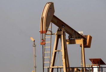 Was Rohöl verkauft in Russland? Produktion und Verkauf von Öl