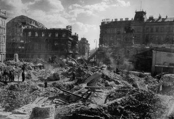 La libération de Vienne 13 Avril 1945. Vienne Sturm