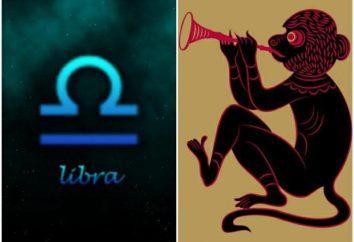 Libra-Monkey: cechy mężczyzn i kobiet