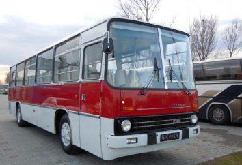 Bus Ikarus 255: Fotos, technische Daten