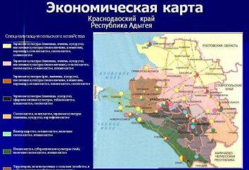 L'économie du territoire de Krasnodar: les principaux domaines